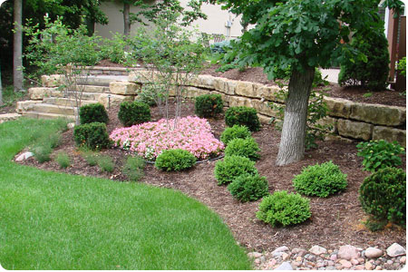 landscaping photo 14